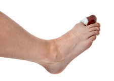 Mans leg with blood bandaged painful big toe leg area isolated Stock Photos