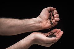 Mans`s hands pouring black pepper from one to another Royalty Free Stock Photo