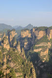 Mansan άποψη απότομων βράχων Tien σε Zhangjiajie Στοκ Εικόνα
