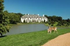 mansión ejecutiva Foto de archivo libre de regalías
