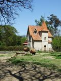 The mansion with bisons Stock Image