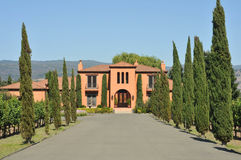Mansion at end of long driveway with trees Stock Photography