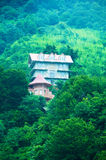 Mansion in the mountain forest Stock Image