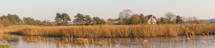 Mansion near a river with reeds Royalty Free Stock Images