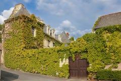 Mansiones del renacimiento cubiertas con la hiedra Chinon francia Imágenes de archivo libres de regalías