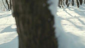 Manspring i djup snö på vinterdag stock video