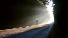 Manspring på soluppgång på den dimmiga skogen arkivfilmer