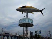 Manta Equateur Photographie stock libre de droits