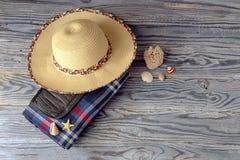 Manta quadriculado para um piquenique, um chapéu de vime e umas conchas do mar em uma madeira Imagem de Stock