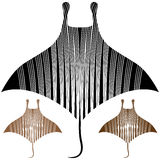 Manta Ray Drawing Images stock