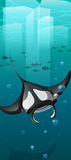 Manta ray swimming under the ocean Royalty Free Stock Photos