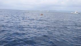Manta Ray Watching Area, Manta-Stadspunt, in Ishigaki-eiland, Okinawa stock footage