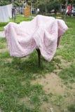 Manta rosada en árbol foto de archivo libre de regalías