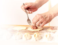 Mantas_cooking_process_19. Woman who is cooking dumplings Stock Photos