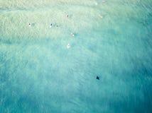 Mantastraal die langs de kustlijn van de Gouden Kust, Queensland, Australië zwemmen royalty-vrije stock foto