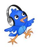 Mante della musica dell'uccellino Immagine Stock