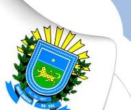 Manteau de Mato Grosso do Sul des bras, Brésil illustration de vecteur