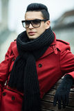 Manteau rouge Image stock
