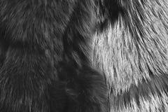 Manteau velu teint dans la couleur verte et grise brunâtre, plan rapproché image libre de droits