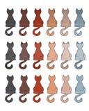 Manteaux de couleur de fourrure de chat Image libre de droits