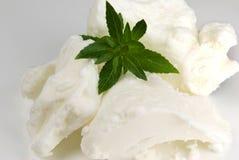 Manteiga de Shea Imagem de Stock Royalty Free
