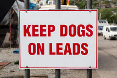 Mantenga i cani sui cavi Fotografia Stock Libera da Diritti