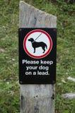 Mantenga i cani sui cavi Fotografia Stock