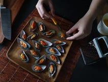 Mantenha em escovar a vida culinária fotografia de stock royalty free