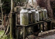 Mantequeras de leche viejas Fotografía de archivo