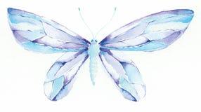 Mantequilla azul y púrpura de la fantasía Fotografía de archivo