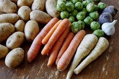 Mantimentos saudáveis dos vegetais crus Fotografia de Stock Royalty Free
