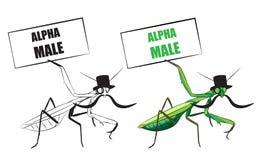 mantis ανασκόπησης που προσεύχονται το λευκό Αστεία διανυσματική απεικόνιση Στοκ φωτογραφία με δικαίωμα ελεύθερης χρήσης