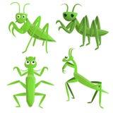 Mantis icons set, cartoon style stock illustration