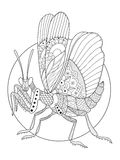 Mantis insect coloring book vector illustration Royalty Free Stock Photos