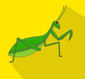 Mantis Insect Vector Royalty Free Stock Image