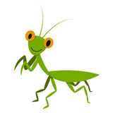 Mantis, Mantodea grasshopper in flat style, vector Stock Images