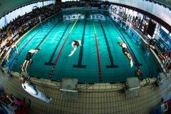 MANTOVA - 19. FEBRUAR: BPM-Sport-Managementschwimmteam, das im italienischen Treffen am 19. Februar 2015 in Mantova, I durchführt Stockfotos