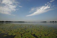 Mantua优越湖,意大利 免版税库存照片