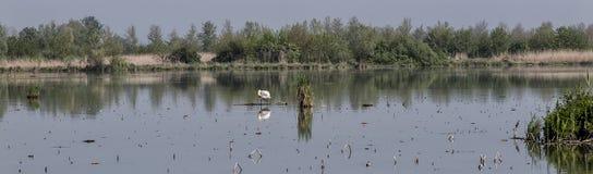 Mantua, Italy, Mincio river Stock Images