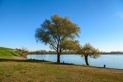 Mantua-Seeblick an einem sonnigen Tag lizenzfreie stockbilder