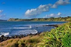 Manu Bay cênico em Nova Zelândia Fotos de Stock