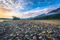 Manu National Park, Peru - 6. August 2017: Ufer des Madre stockbild