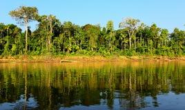 Manu park river. River in Manu Park of Peru Stock Photography