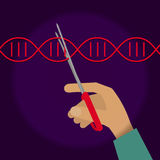 Manual genetic engineering. Concept. Stock vector illustration of a human hand cutting DNA double helix with scissors Stock Image