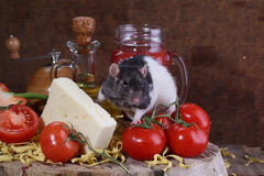 Manual mouse next to cheese and tomatoes. On a wooden table Royalty Free Stock Image