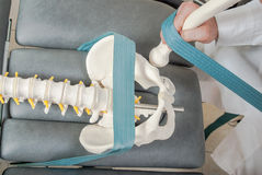 Manual, physio and therapy techniques performed. Manual, physio and kinesio therapy techniques performed by a male physiotherapist on a training plastic spine Stock Image