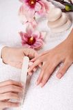 Manucure Royaltyfri Bild