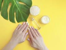 Manucure femelle de mains créative, crème cosmétique, feuille de monstera, sur un fond jaune images stock