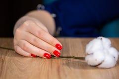 Manucure sensible ? la mode de ressort Mains femelles avec la conception de clou image stock