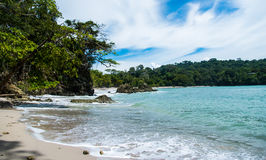 Manuel Antonio foto de stock royalty free